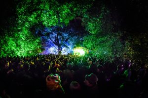 zoo project, festival, slinkie, techno, feature, culture